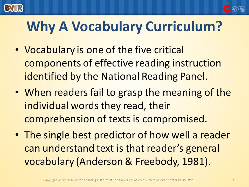 Why A Vocabulary Curriculum