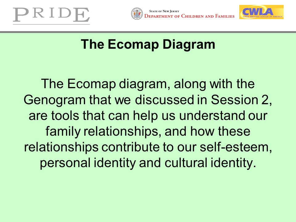 The Ecomap Diagram