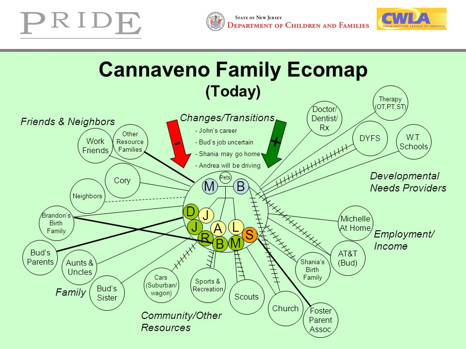 Cannaveno Family Ecomap (Today)