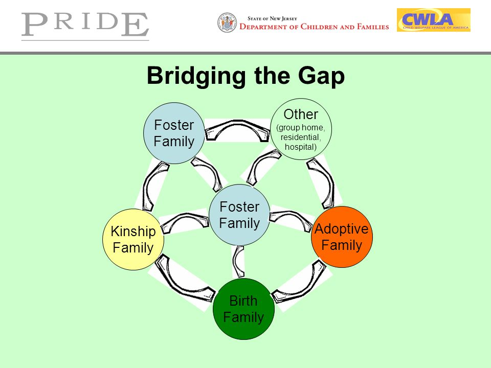 Bridging the Gap Other Foster Family Foster Family Adoptive Kinship