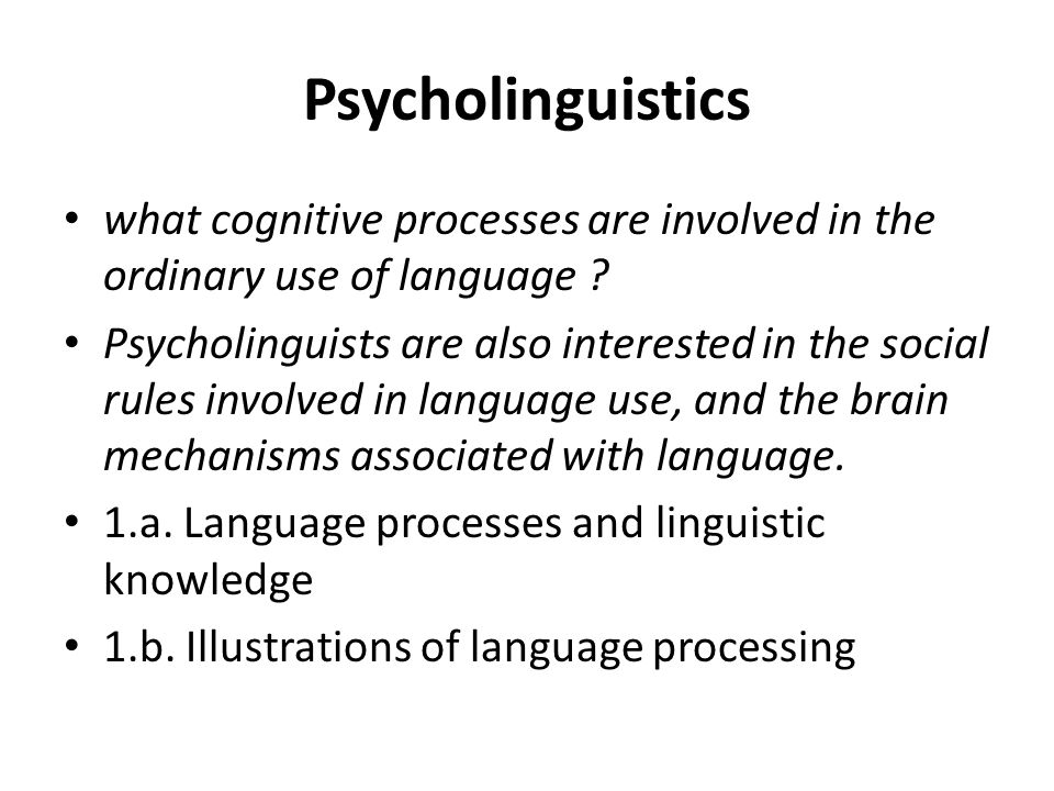 Psycholinguistics what cognitive processes are involved in the ordinary use of language