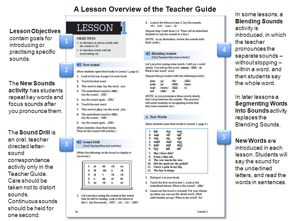 A Lesson Overview of the Teacher Guide