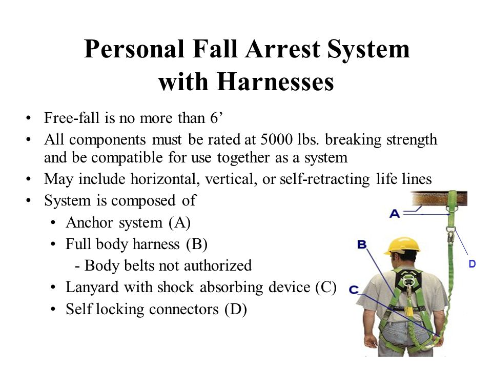 Personal Fall Arrest System with Harnesses
