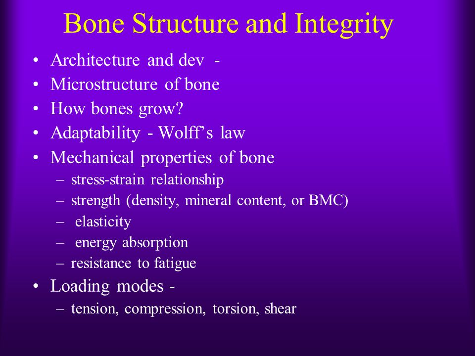 Bone Structure and Integrity