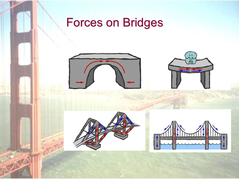 Forces on Bridges
