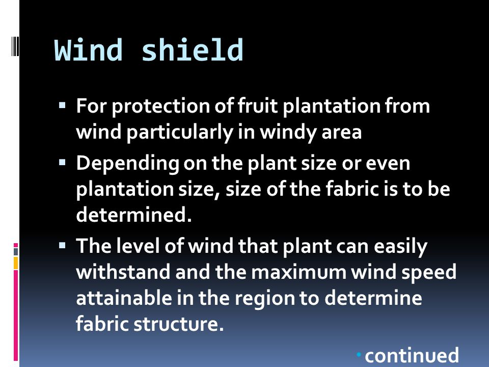 Wind shield For protection of fruit plantation from wind particularly in windy area.