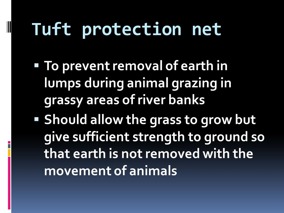 Tuft protection net To prevent removal of earth in lumps during animal grazing in grassy areas of river banks.