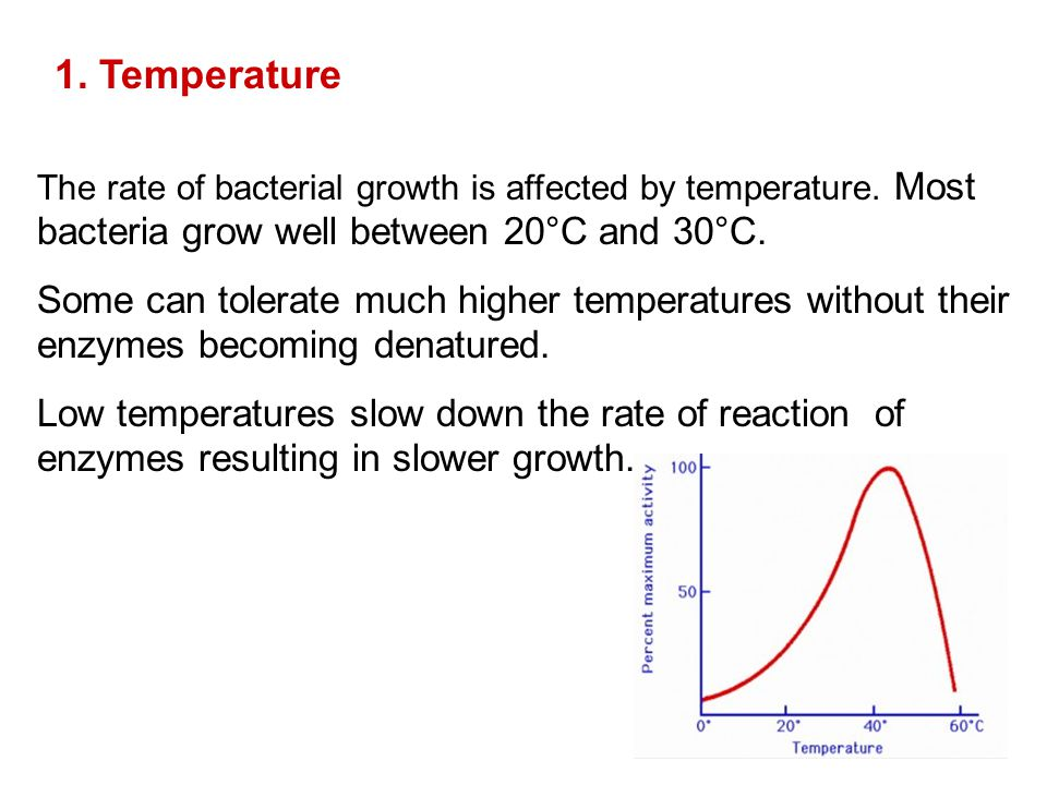 1. Temperature The rate of bacterial growth is affected by temperature. Most bacteria grow well between 20°C and 30°C.