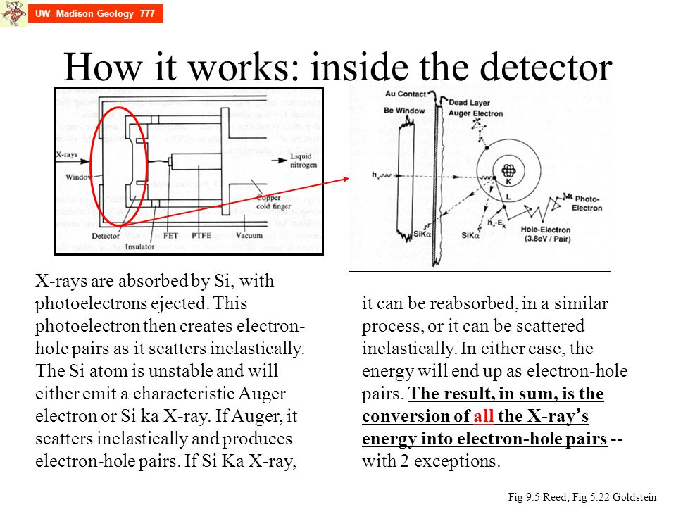 How it works: inside the detector