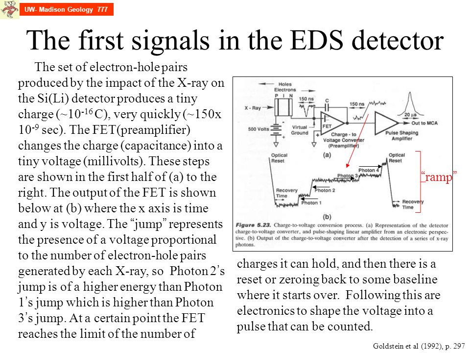 The first signals in the EDS detector