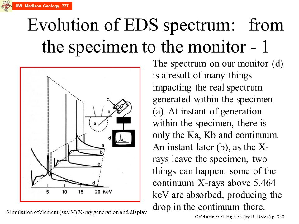 Evolution of EDS spectrum: from the specimen to the monitor - 1