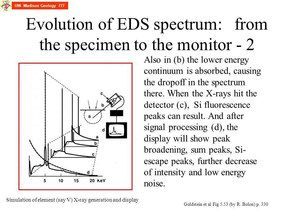 Evolution of EDS spectrum: from the specimen to the monitor - 2