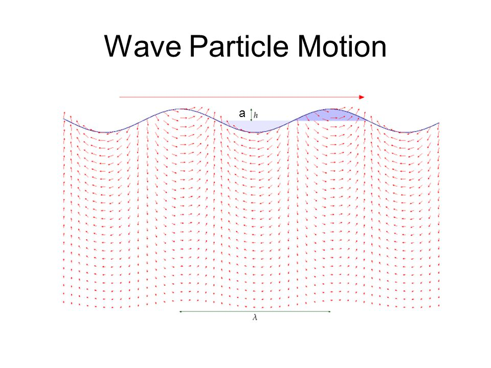 Wave Particle Motion a