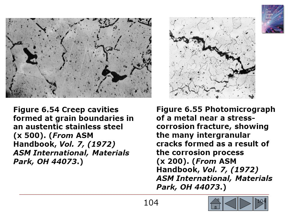 Figure 6.54 Creep cavities formed at grain boundaries in an austentic stainless steel (x 500). (From ASM Handbook, Vol. 7, (1972) ASM International, Materials Park, OH 44073.)