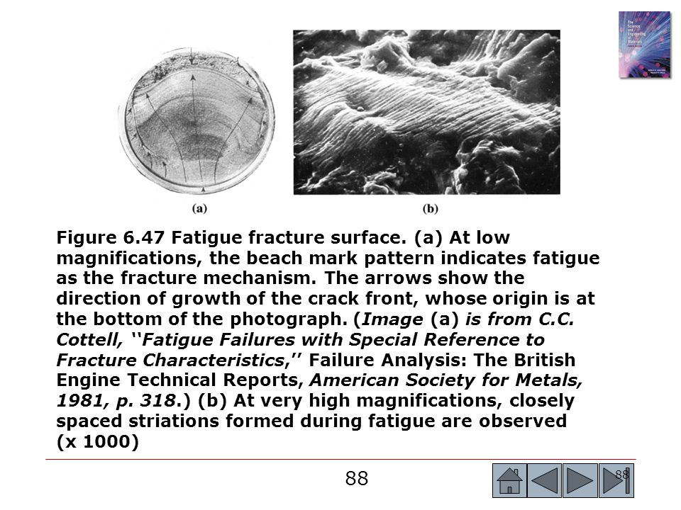 Figure 6. 47 Fatigue fracture surface