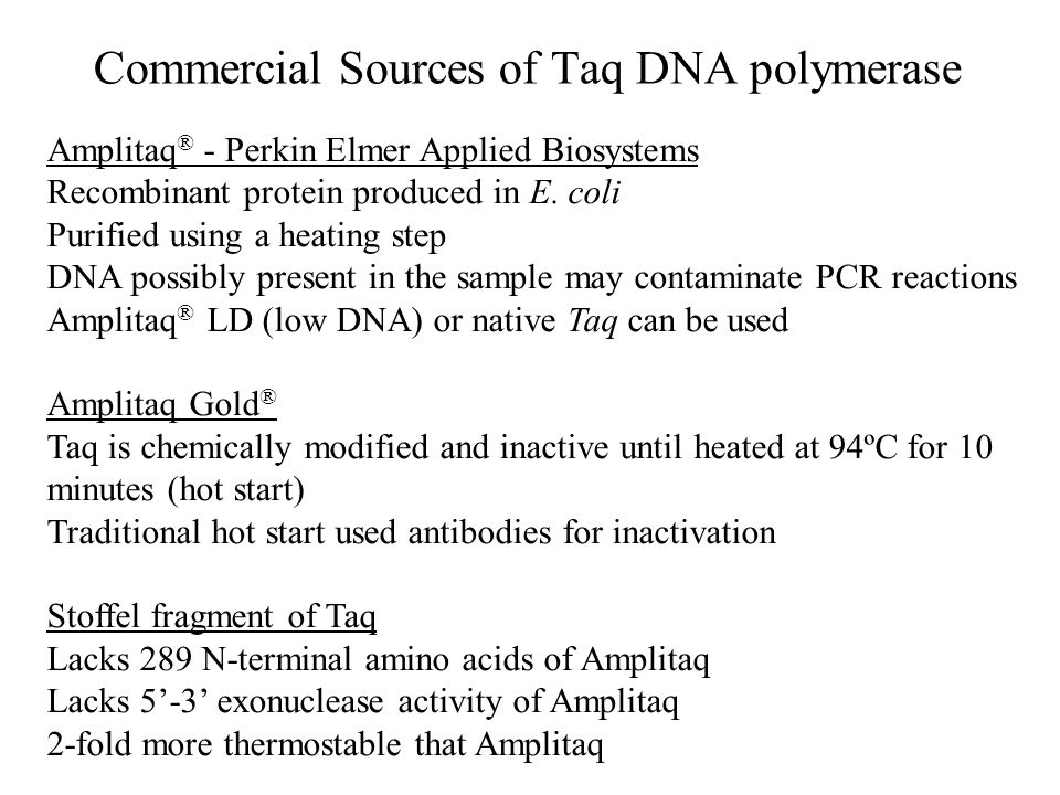 Commercial Sources of Taq DNA polymerase