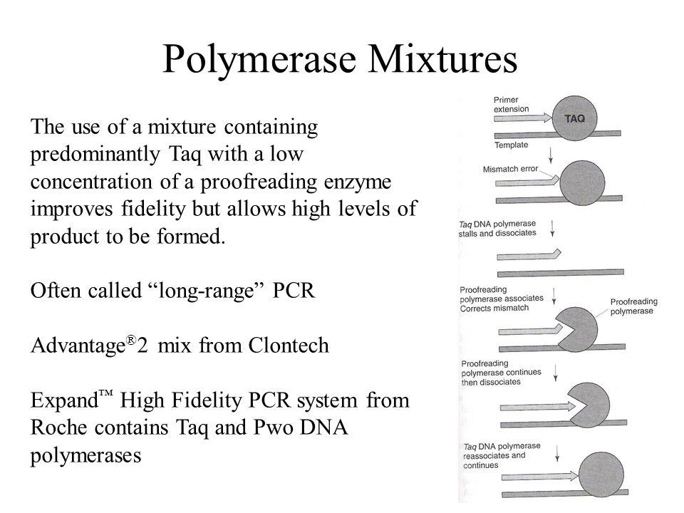 Polymerase Mixtures