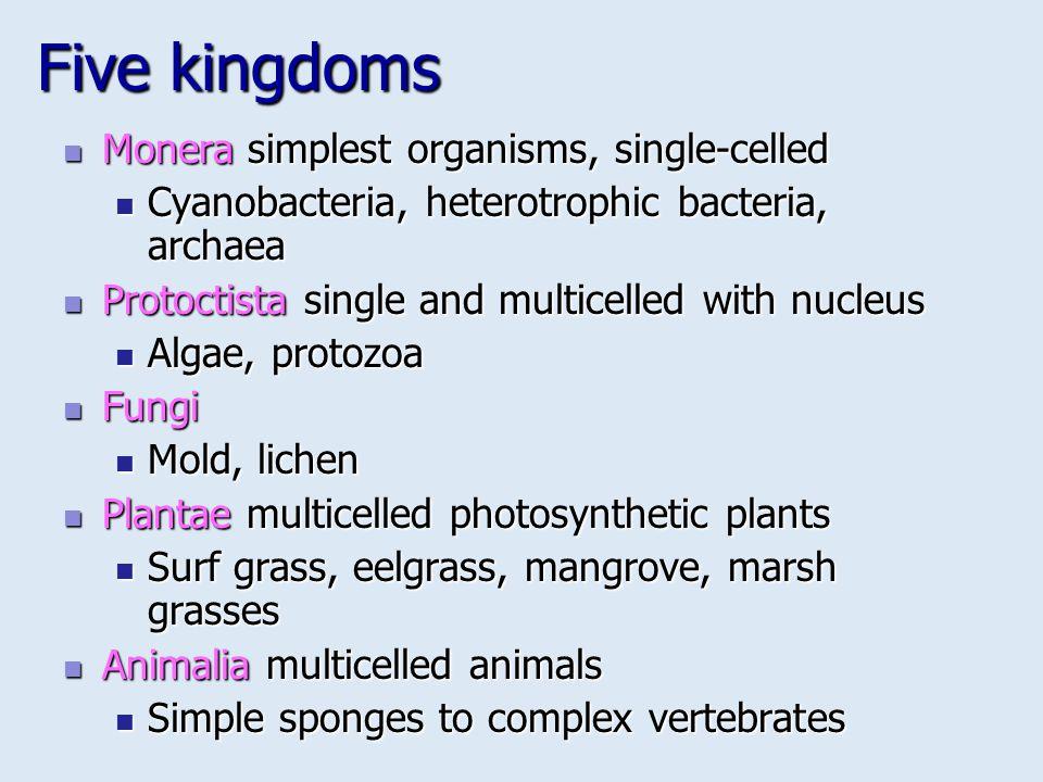 Five kingdoms Monera simplest organisms, single-celled