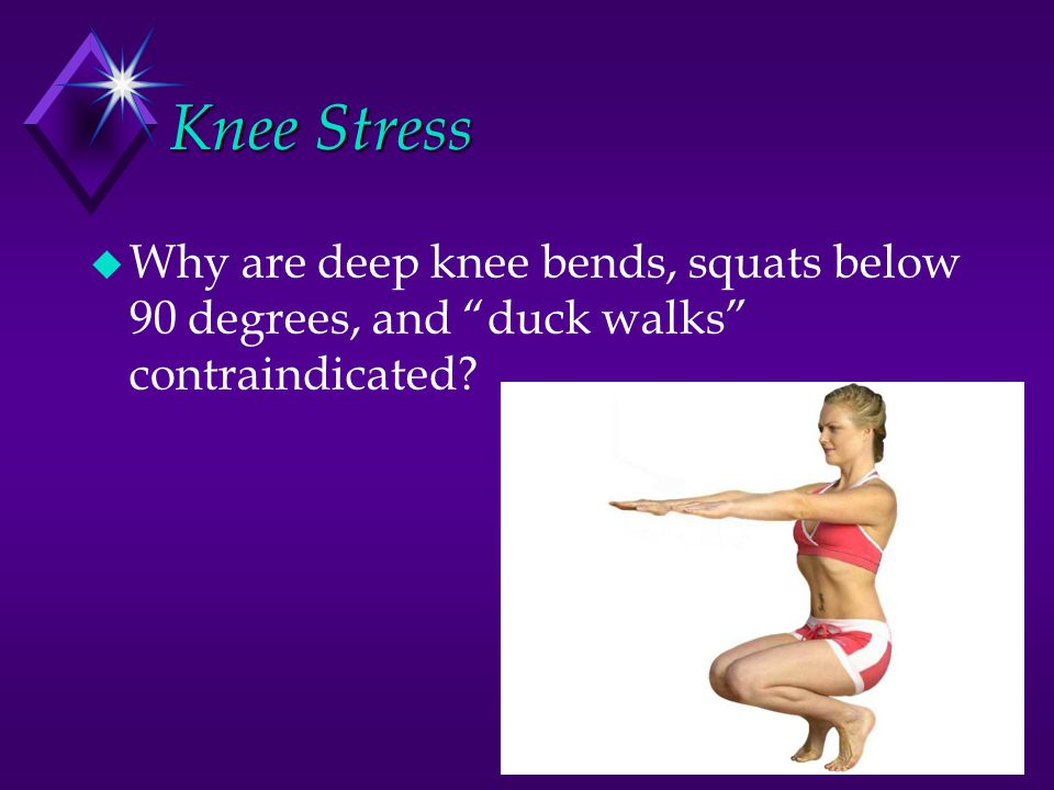 Knee Stress Why are deep knee bends, squats below 90 degrees, and duck walks contraindicated