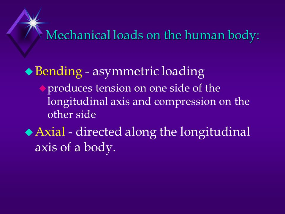 Mechanical loads on the human body: