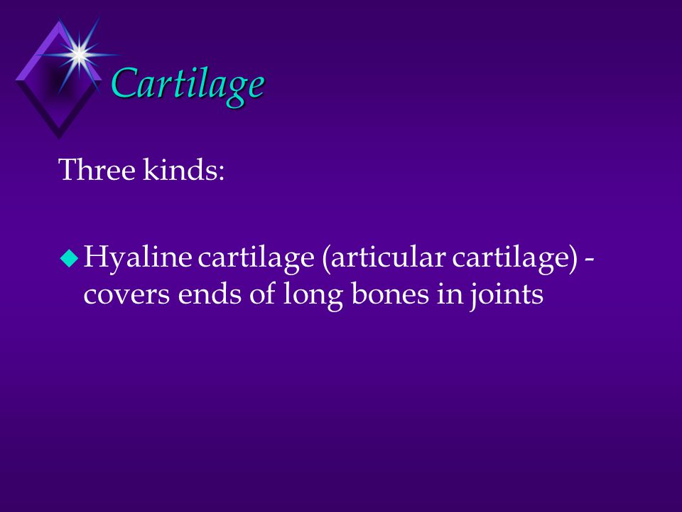 Cartilage Three kinds: