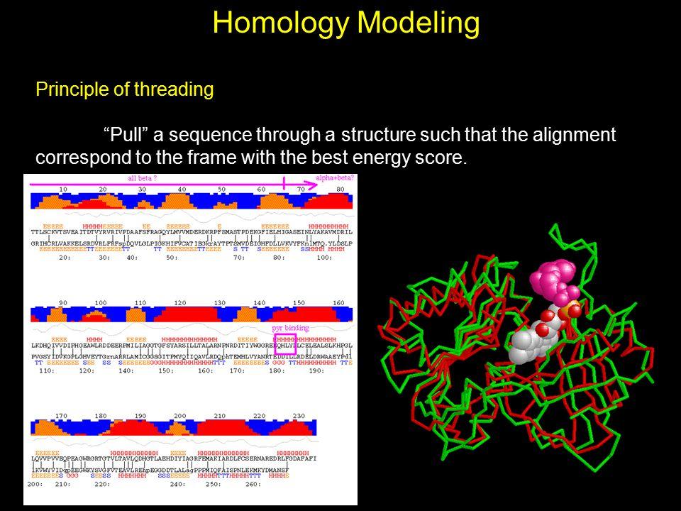Homology Modeling Principle of threading