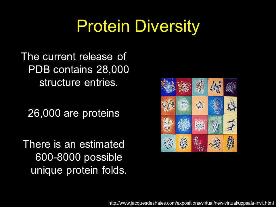 Protein Diversity The current release of PDB contains 28,000 structure entries. 26,000 are proteins.