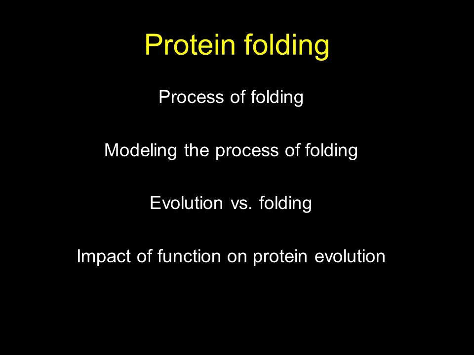 Protein folding Process of folding Modeling the process of folding