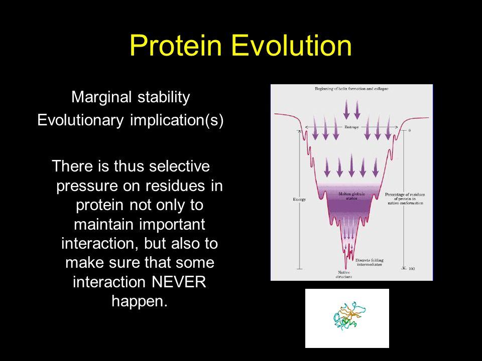 Evolutionary implication(s)