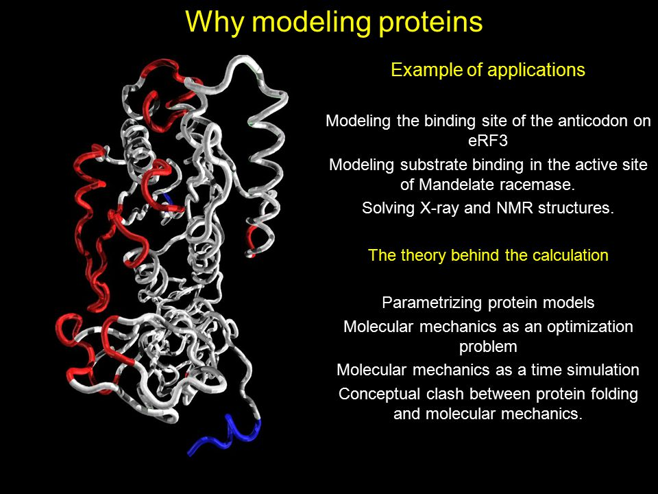 Why modeling proteins Example of applications