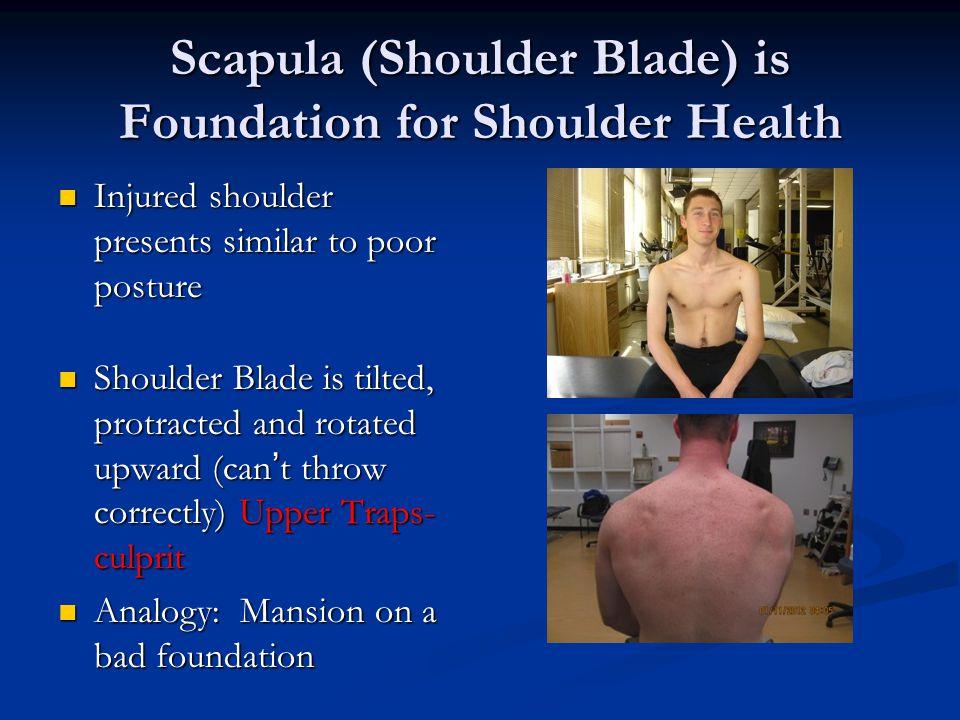 Scapula (Shoulder Blade) is Foundation for Shoulder Health