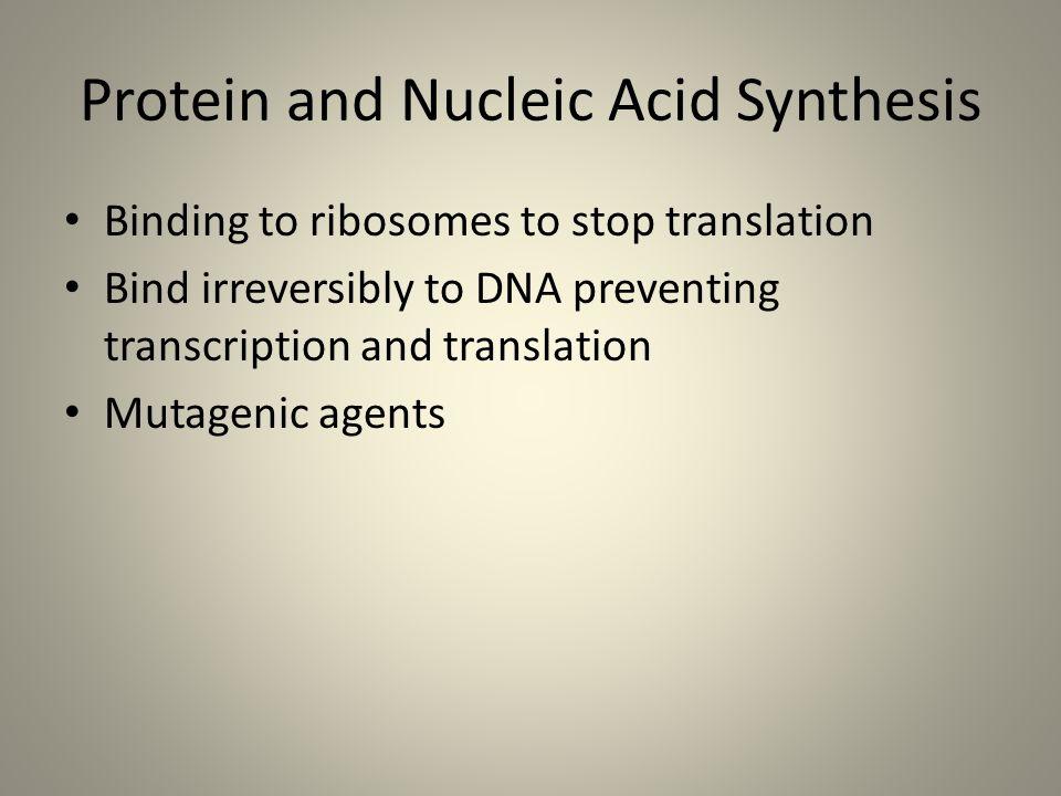 Protein and Nucleic Acid Synthesis
