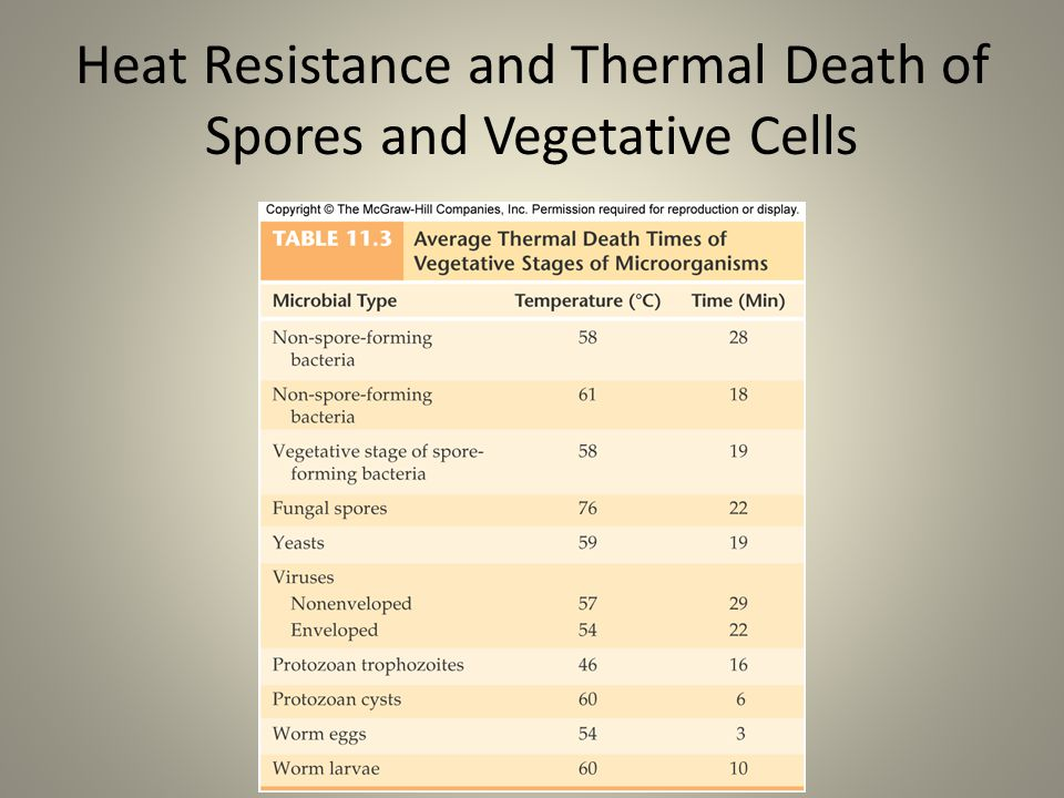 Heat Resistance and Thermal Death of Spores and Vegetative Cells