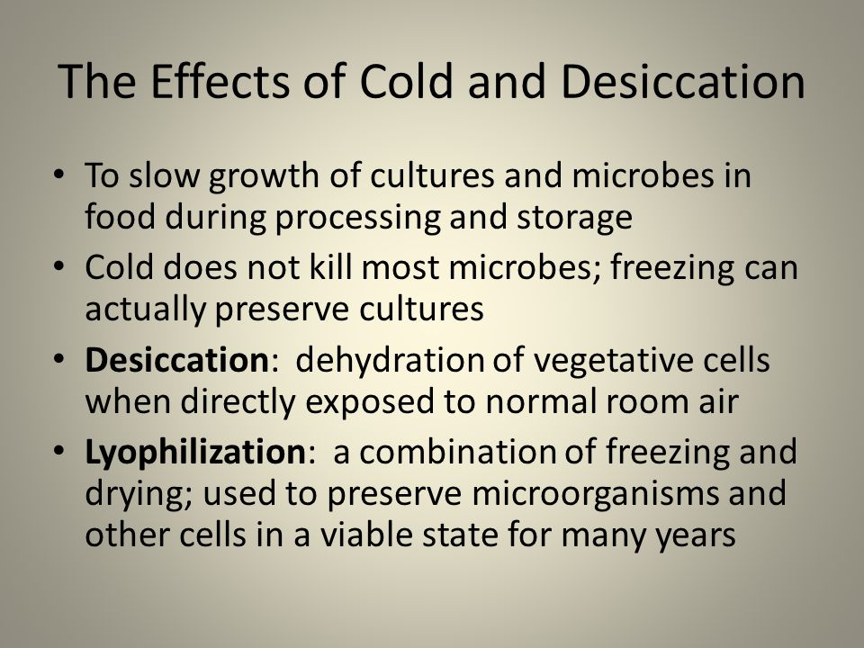 The Effects of Cold and Desiccation