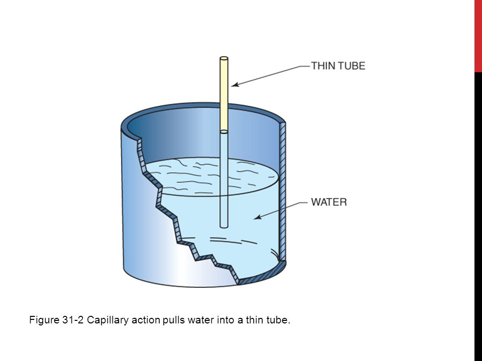 Figure 31-2 Capillary action pulls water into a thin tube.