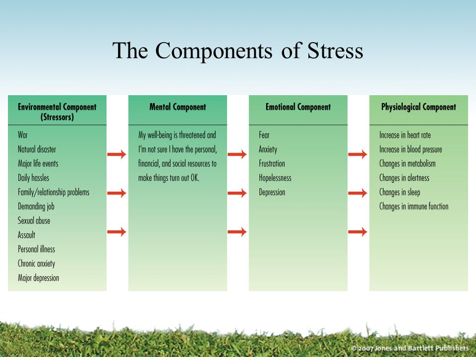 The Components of Stress