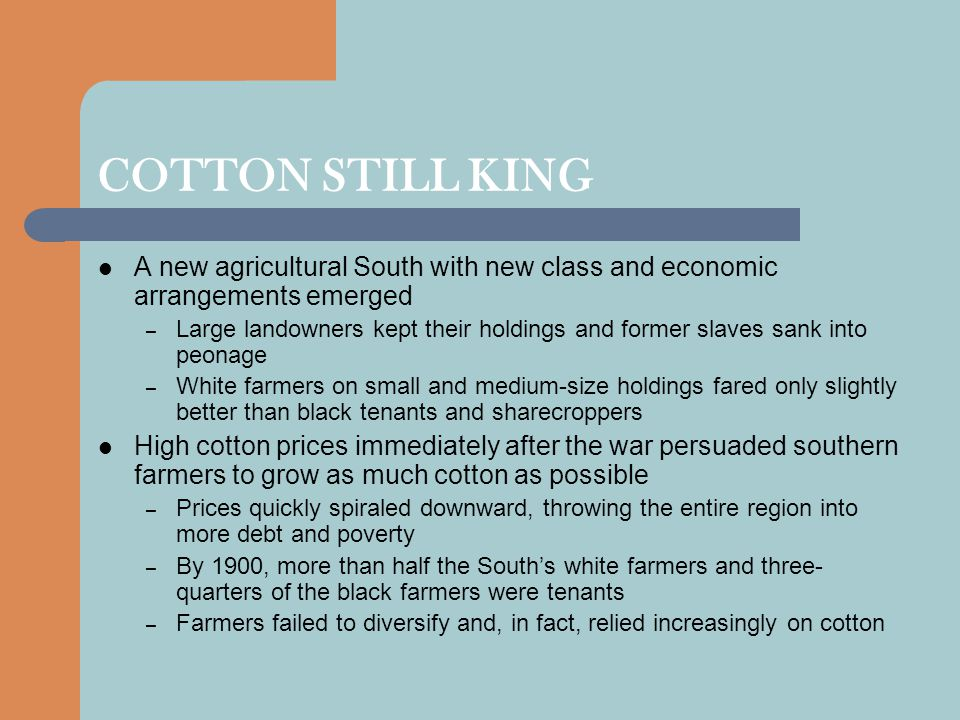 COTTON STILL KING A new agricultural South with new class and economic arrangements emerged.