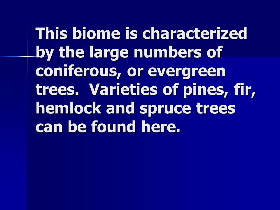 This biome is characterized by the large numbers of coniferous, or evergreen trees.