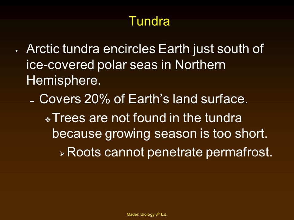Covers 20% of Earth's land surface.
