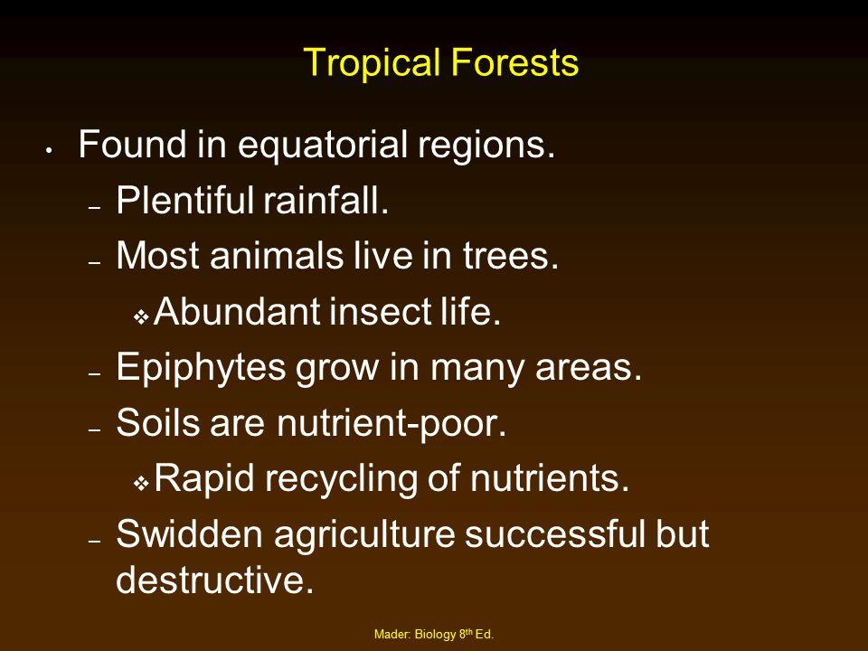 Found in equatorial regions. Plentiful rainfall.