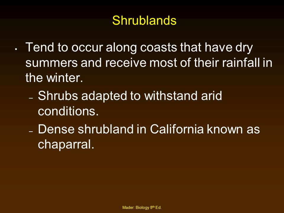 Shrubs adapted to withstand arid conditions.