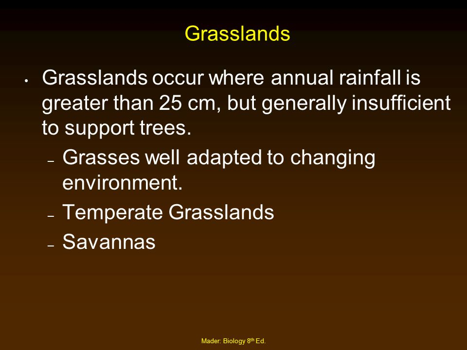 Grasses well adapted to changing environment. Temperate Grasslands