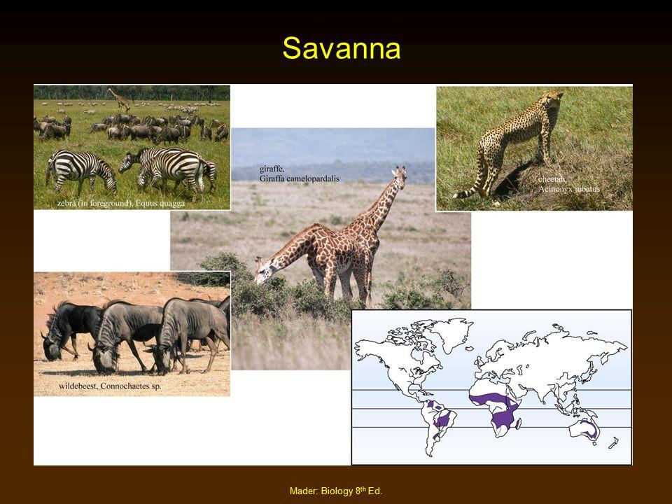 Savanna Mader: Biology 8th Ed.