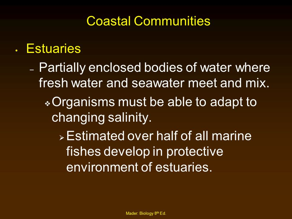 Organisms must be able to adapt to changing salinity.