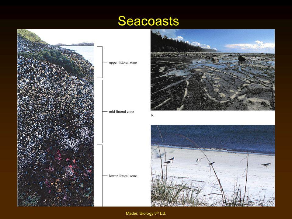 Seacoasts Mader: Biology 8th Ed.