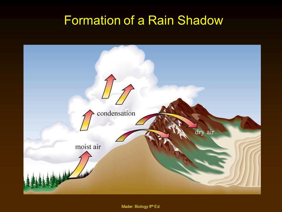 Formation of a Rain Shadow