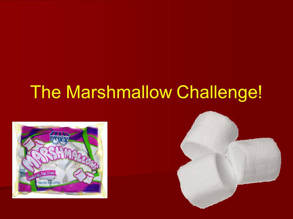 The Marshmallow Challenge!