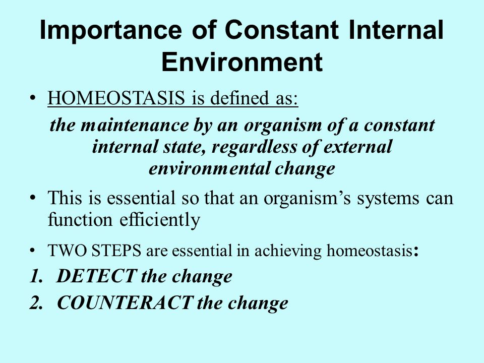 Importance of Constant Internal Environment