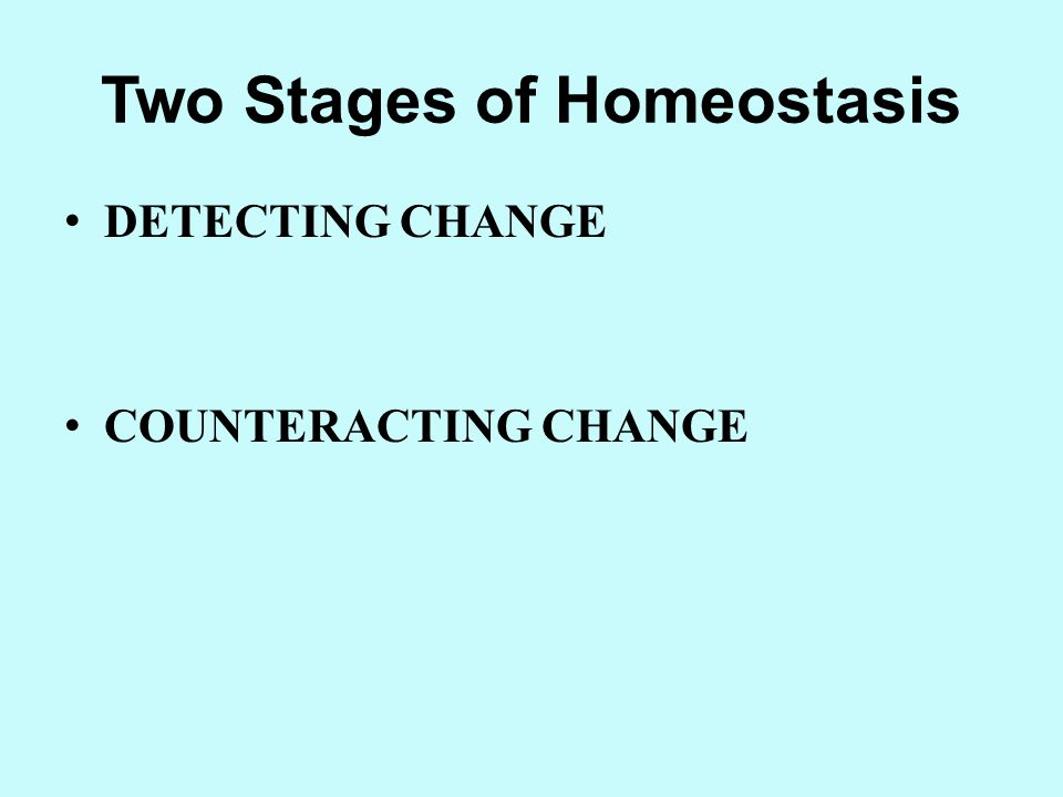 Two Stages of Homeostasis
