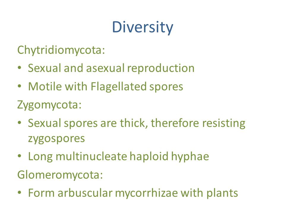 Diversity Chytridiomycota: Sexual and asexual reproduction